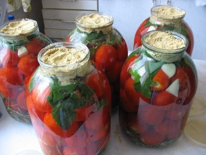 Вкусные квашеные помидоры с горчицей
