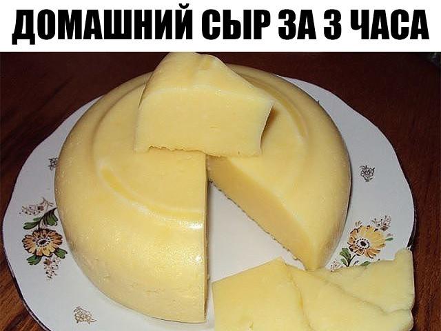 Домашний сыр за 3 часа