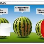 Наблюдательный совет какие арбузы покупать нельзя, фото