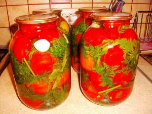 Помидоры с морковной ботвой фото