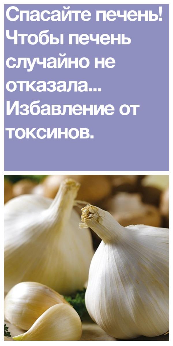 Спасайте печень! Чтобы печень случайно не отказала… Избавление от токсинов.
